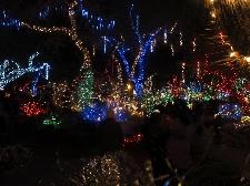 Eventi di Natale a Venaria Reale Foto
