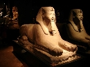 Museo Egizio foto - capodanno torino e provincia